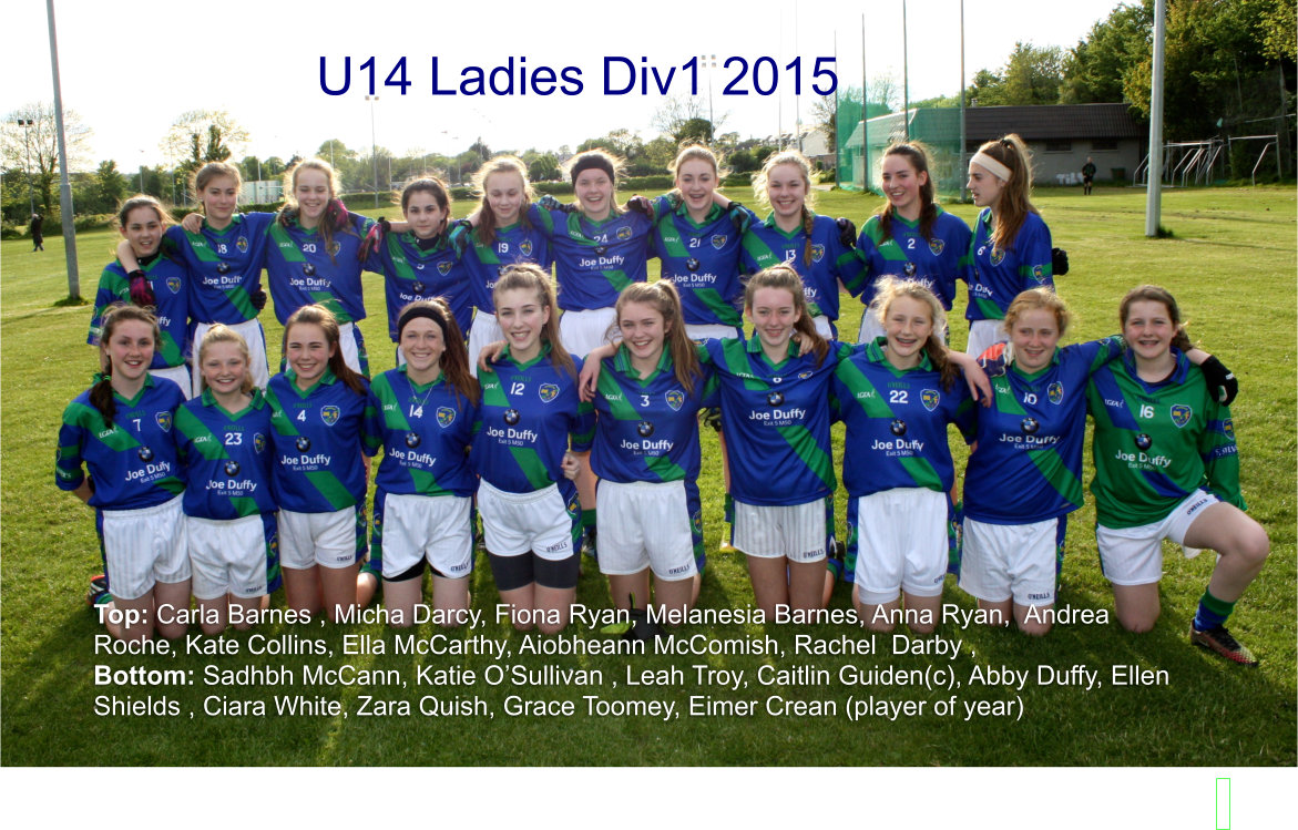 Girls u14 in Division 1