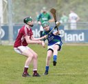 Hurlers go down to Raheny