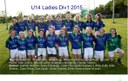 U14 girls good season in Division1