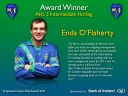 SLIDES-FINAL-GAA-Awards-2010-20110122 copy.023.jpg